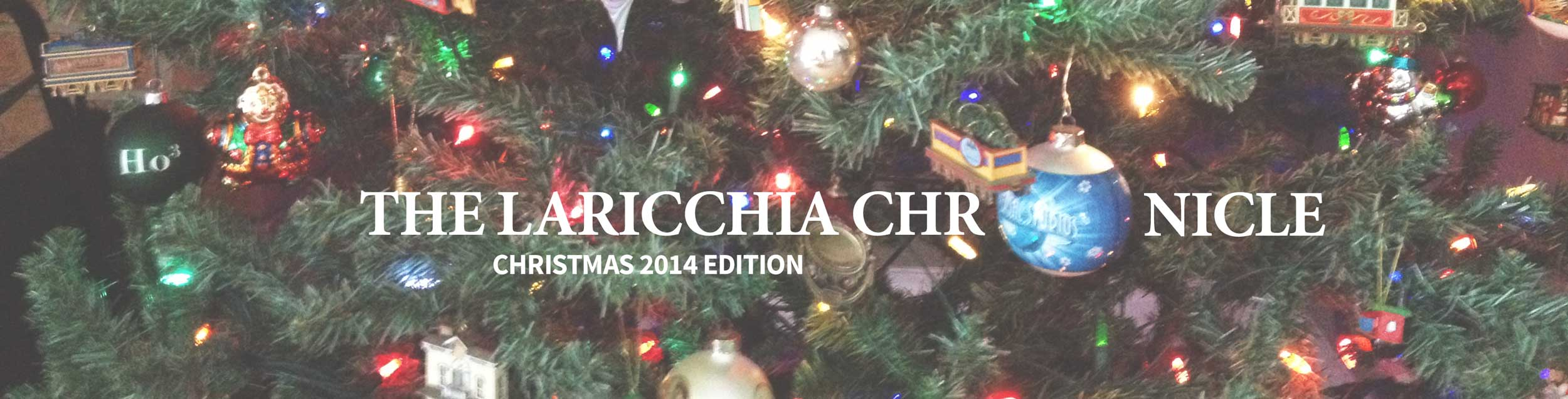 christmas-newsletter-header-2014