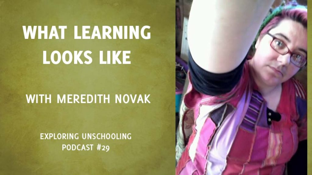 Pam chats with Meredith Novak about what learning looks like with unschooling.